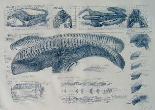 Alien 3 Xenomorph Design Michelle Pfeiffer