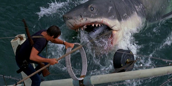 shark films jaws movie
