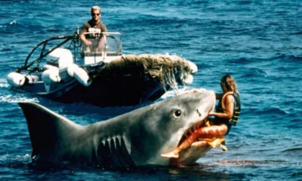 Shark Movies Jaws