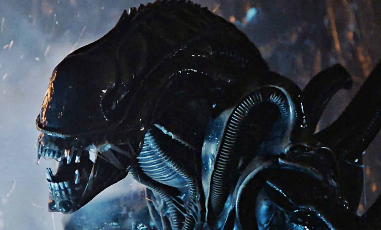 Alien Franchise James Cameron