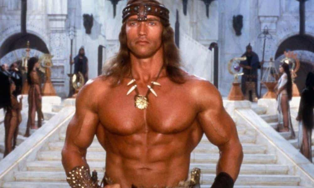 Arnold Schwarzenegger Still Wants To Do 'Old Man Conan' Movie