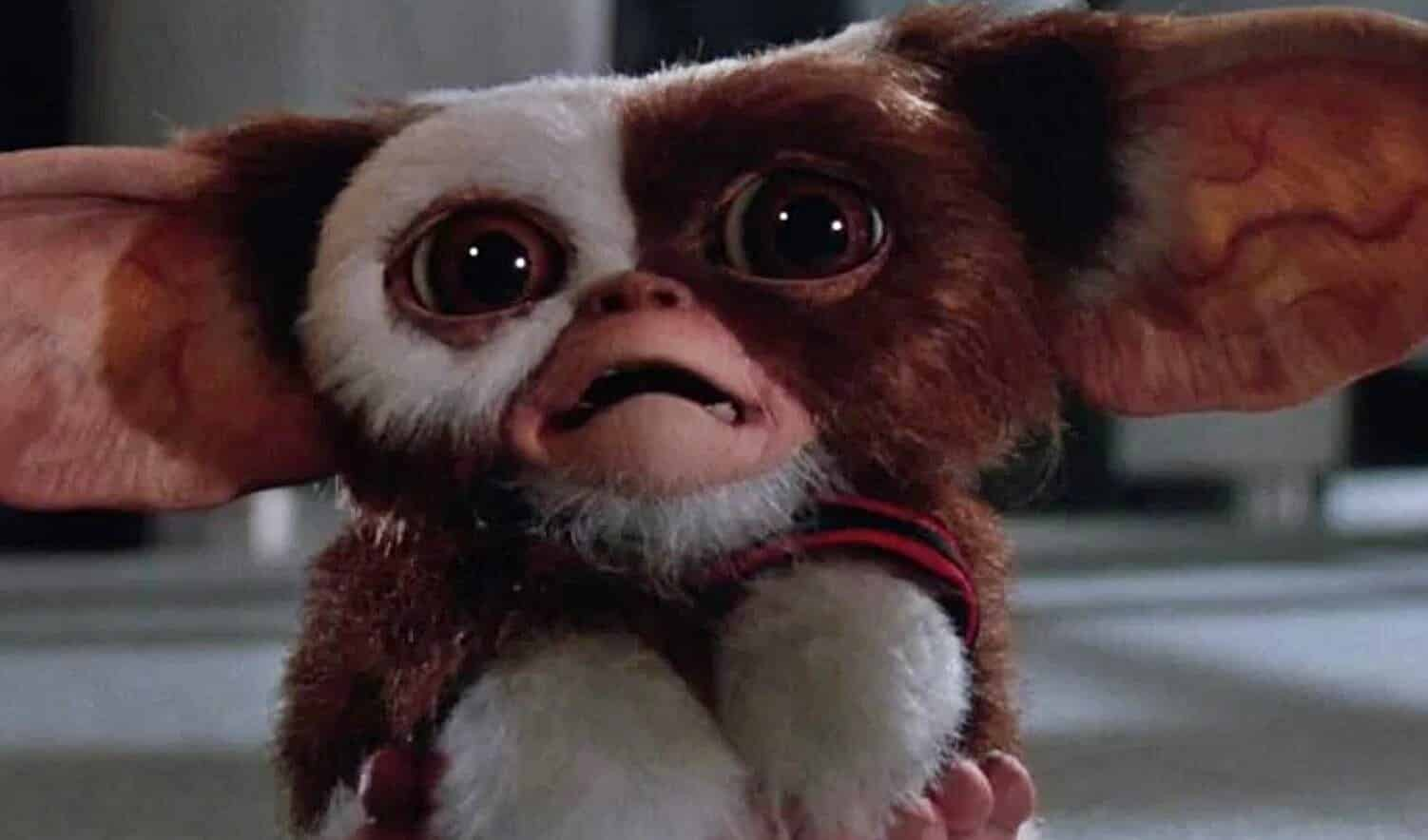 u0026 39 gremlins u0026 39  animated series is officially on the way