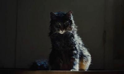 Pet Sematary Movie Remake