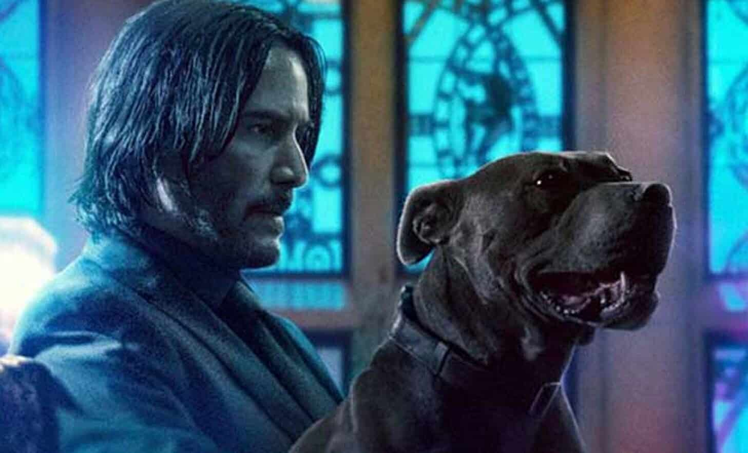 everyone is after mr  wick in new  u0026 39 john wick  chapter 3