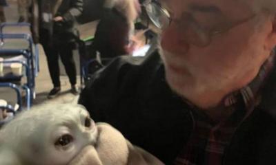 Baby Yoda George Lucas