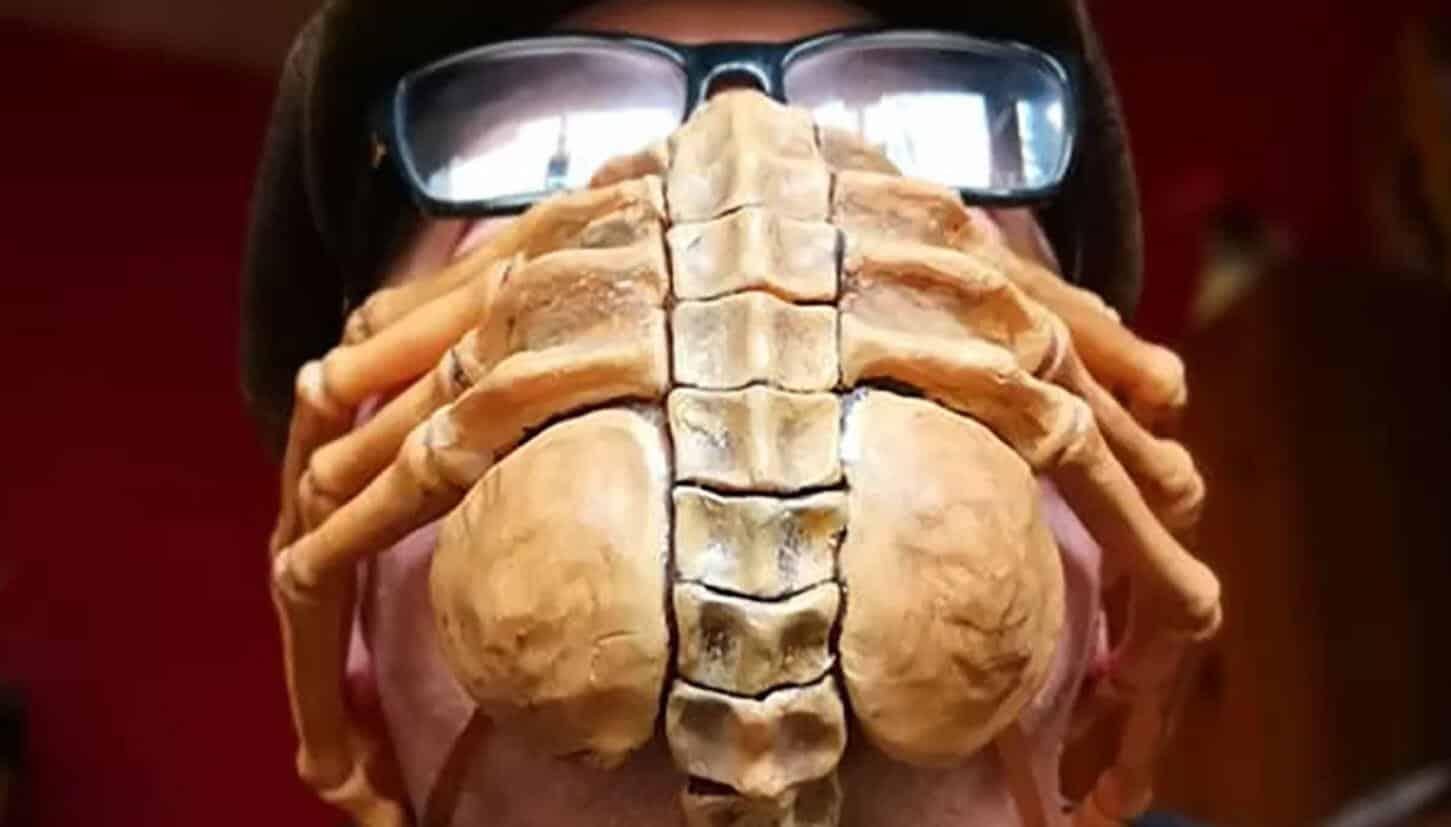 alien facehugger mask coronavirus