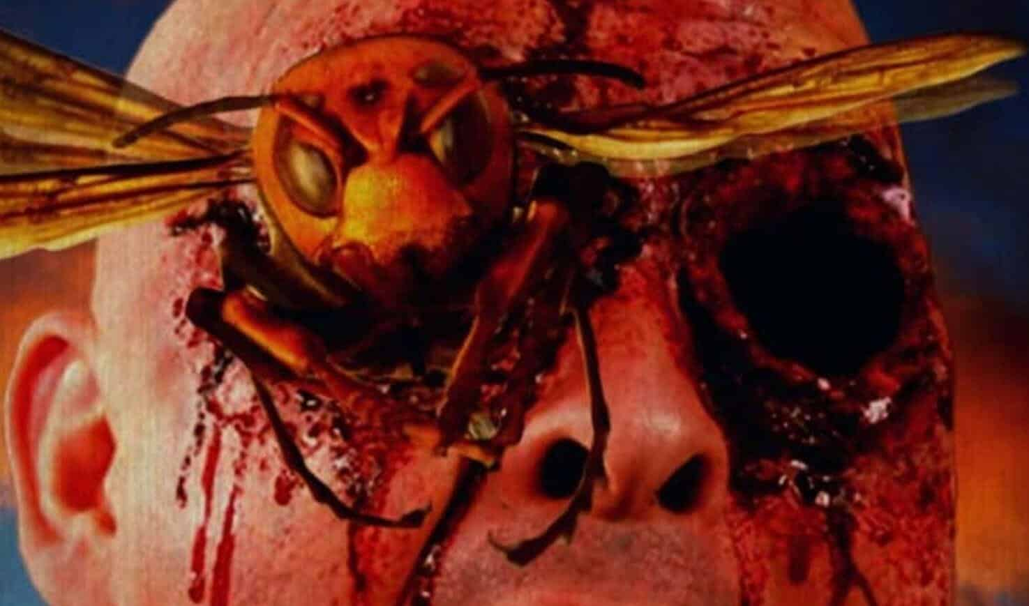 angry asian murder hornets movie